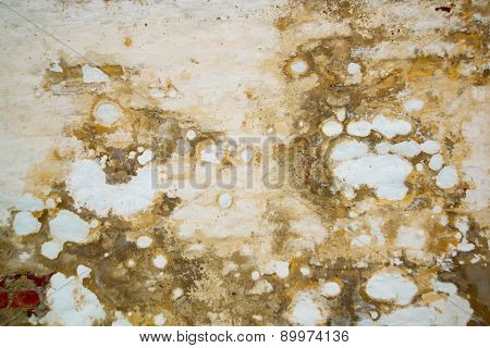 The Texture Of The Stone.the Plaster On The Wall