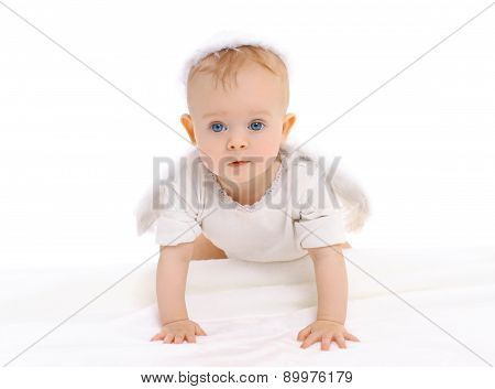 Portrait Of Little Curious Baby Crawls On A White Background