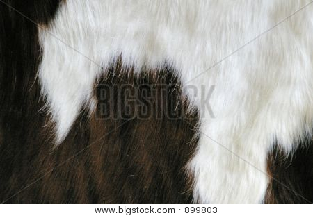 Cow Hide Detail