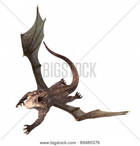 Soaring Dragon