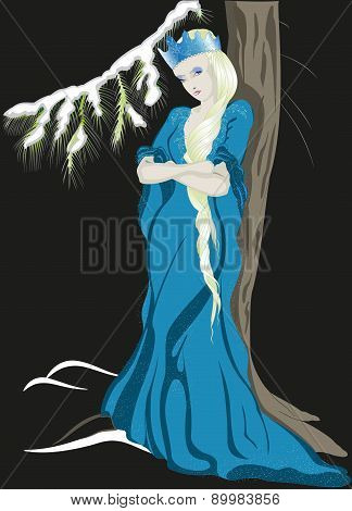 The Snow Queen with a crown. EPS10 vector illustration