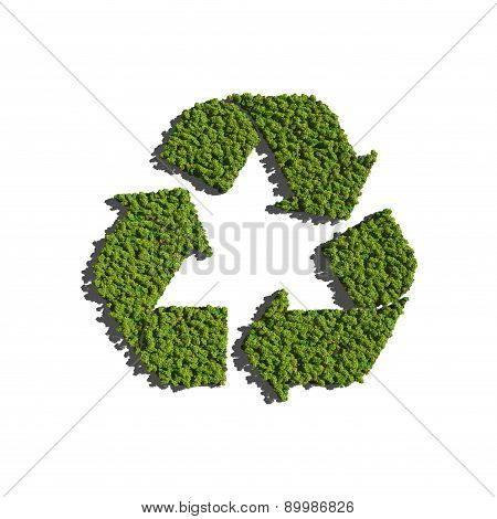 Recycle Icon Create By Tree With White Background