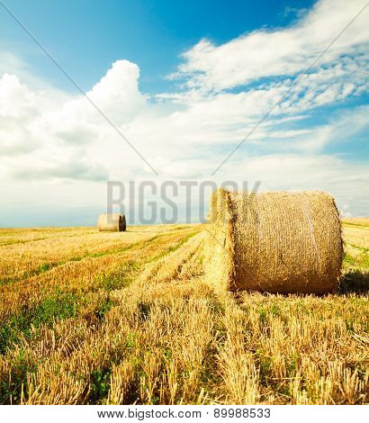 Beautiful Farm Scenery with Haystack