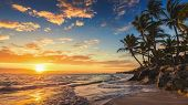 Landscape Of Paradise Tropical Island Beach poster