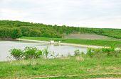 picture of dam  - ianova dam lake timis county romania country landscape - JPG
