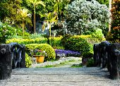 foto of path  - Landscaping in the garden - JPG