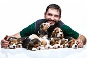 stock photo of puppy beagle  - The happy man and big group of a beagle puppies on white background - JPG