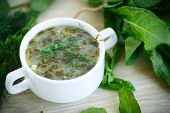 foto of sorrel  - Sorrel soup with egg and greens in a plate - JPG
