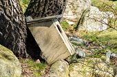 stock photo of nesting box  - Weathered nesting box for waterfowl that has fallen down from a tree - JPG
