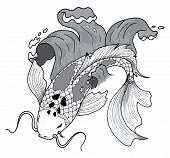 picture of koi tattoo  - Vector colorfull asian style koi carp fish - JPG