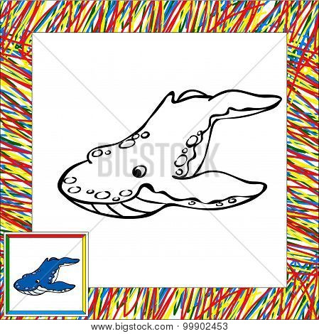 Cartoon Whale Killer Coloring Book With Border