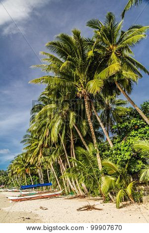 Beach With Boat And Palm Trees-palawan,philippines