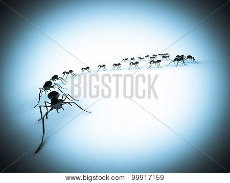 Group of insects, ants, in a line on the floor