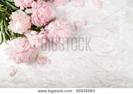 Flowers. Beautiful peony on the table