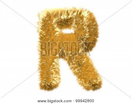 Letter R from fur fox alphabet