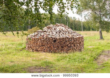 Stack of Firewood in Forest Glade