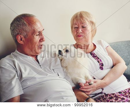 Mature Man And Woman 60-65 Years Old Sitting On The Sofa And Holding White Pomeranian