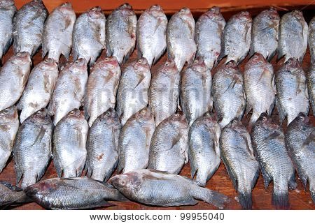 Fresh Fish Exposed On The Market Stalls Of The Village Pomerini In Tanzania, Africa 716