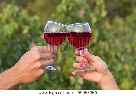 Woman And Man In Vineyard Drinking Red Vine In The Sunshine Clinking The Glasses