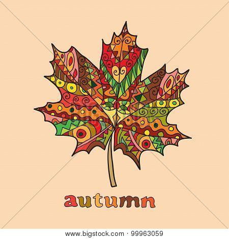 Isolated autumn bright vector maple leaf
