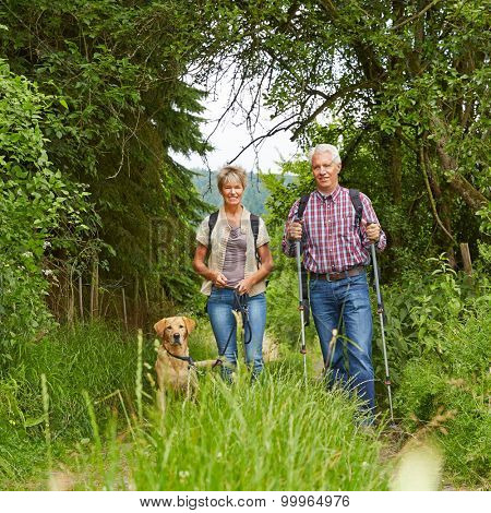 Happy senior couple with dog on a hike in summer in the nature