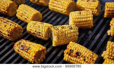 Organic Grilled Corn