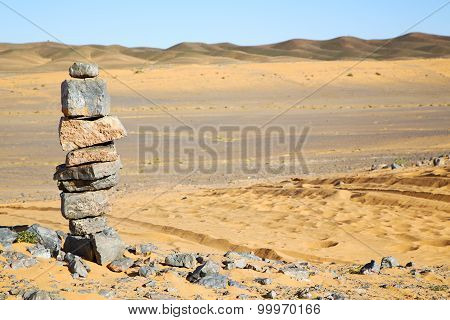 Old Fossil In  The Desert Of Morocco Rock  Stone Sky