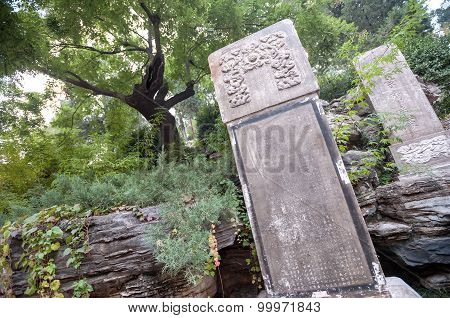 Tree And Stele Where The Last Emperor Of The Ming Dynasty, Chongzhen, Hanged Himself In Jingshan Par