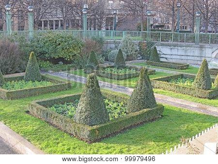 Junipers garden