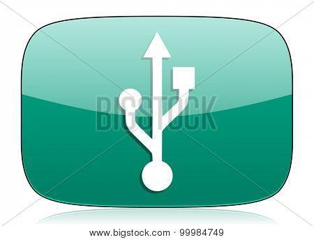 usb green icon flash memory sign