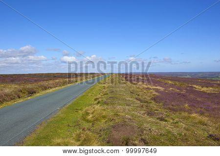 Wild Moorland Road