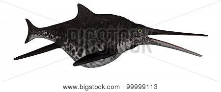 Shonisaurus dinosaur fish - 3D render