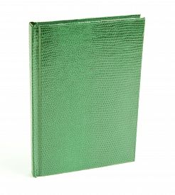 stock photo of green snake  - green notepad in leather cover isolated on a white background Snake Cover - JPG