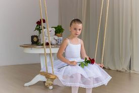 picture of fairy tail  - Portrait of little cute ballerina on swing with rose - JPG