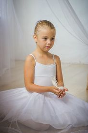 image of fairy tail  - Little cute ballerina with white bird - JPG