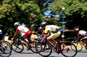picture of spandex  - Cycling race - JPG